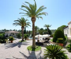 I Giardini della Corte - Palme nel giardino