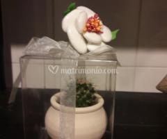 Pianta grassa mini  in scatola con confetti bianchi