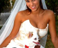 Qua la zampa - Wedding Dog Sitter