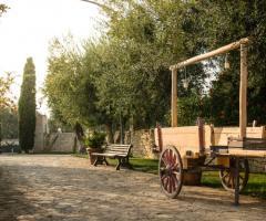 Casale San Nicola - Caratteristiche pugliesi