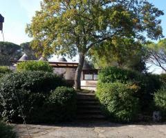 Masseria del Gelso Antico - Un vista della masseria