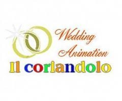 Il Coriandolo Wedding Animation