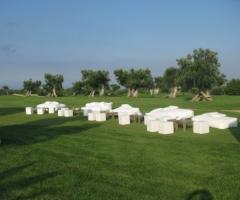 Matrimonio Picnic di lusso nel campo da golf circandati da ulivi secolari