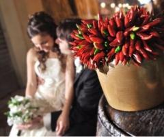 Foto romantica degli sposi