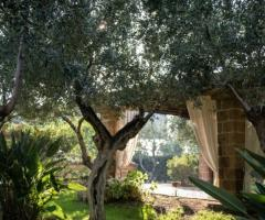 Casale San Nicola - Immersi nella natura
