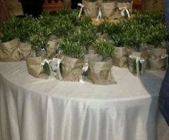 Bomboniere bonsai in juta Nozze a Messina