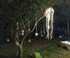 Emozioni Wedding Planner - Decorazioni sull'albero