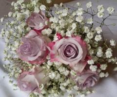 Insolito Fiori - Rosa e bianco