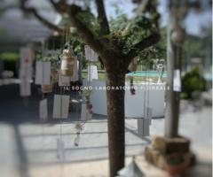 Il Sogno - Laboratorio Floreale - Coreografie all'aperto