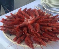 Masseria Santa Teresa - Il pesce fresco