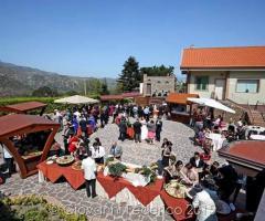 Villa Alba - Gli aperitivi