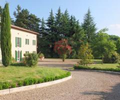 Villa Fabio - I giardini intorno alla villa