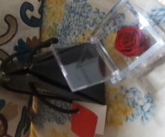 Rosa stabilizzata  in scatolina