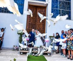 Istanti Fotografia - Il volo delle colombe