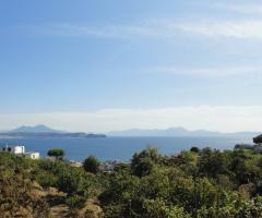 Panorama sul Golfo di Napoli