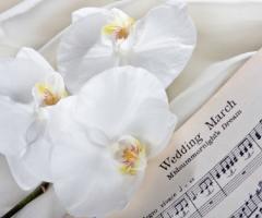 Di Chicchi e Miele - Wedding & Event Planner