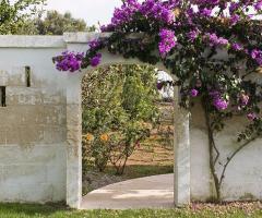 Roberta Barzotti Wedding Planner - Location per tutte le esigenze
