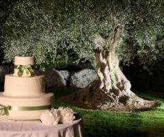 Taglio torta all'ulivo secolare