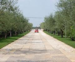 Ingresso alla location di nozze a Casamassima (Bari)