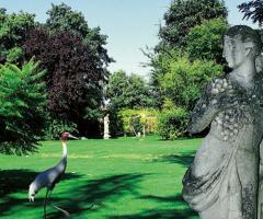 Il parco secolare, le statue gli animali in semilibertà di Parco Gambrinus