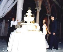 Palazzo Trecchi - La torta nuziale