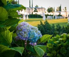 Relais il Santissimo -  I fiori