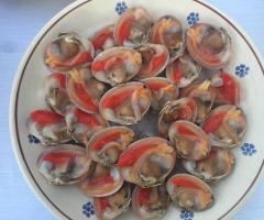 Masseria Santa Teresa - Il pesce crudo