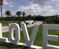 Parco della Laguna Lesina - Auto d'epoca per la sposa