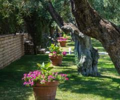 Casale San Nicola - Il casale a primavera