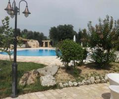 Agriturismo Tredicina - Il giardino a bordo piscina