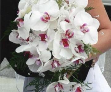 Lucarelli Fiori Matrimonio