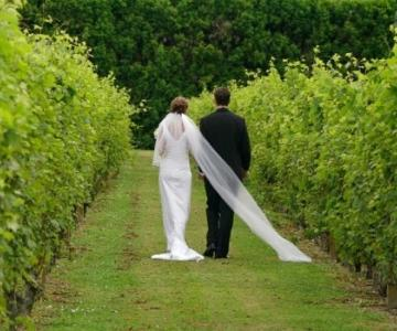 Matrimonio diVino - Organizzazione del matrimonio a tema