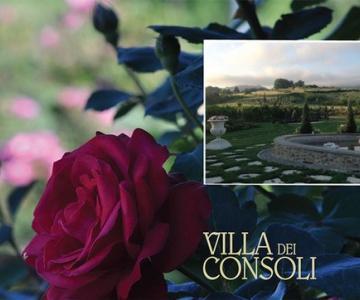 Villa dei Consoli / Borgo dell'Angiolo Eventi