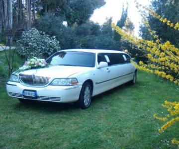 Passion Limousine Service