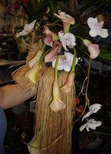 Bouquet particolare di calle