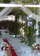 Allestimento della cerimonia di nozze in giardino con guida rossa