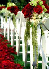 Allestimento di rose per la cerimonia all'aperto