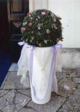 Fiori per i vasi della chiesa