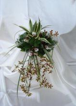 Bouquet di orchidee Cambria
