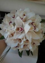 Bouquet Sposa Orchidea Bianca.Foto Bouquet Sposa Di Orchidee Lemienozze It