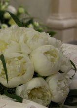 Bouquet delicato di peonie bianche