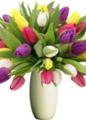 Bouquet tulipani colorati