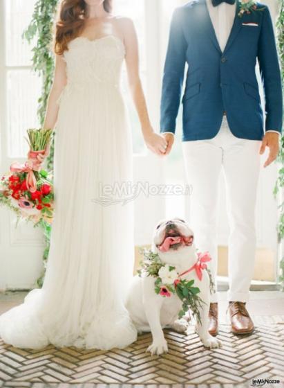 Pet Sister - Servizi di dog sitter per il tuo matrimonio
