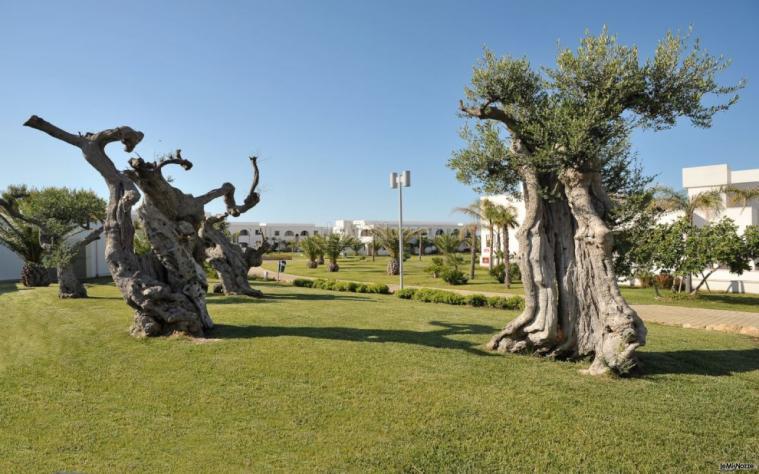 Giardino con alberi secolari
