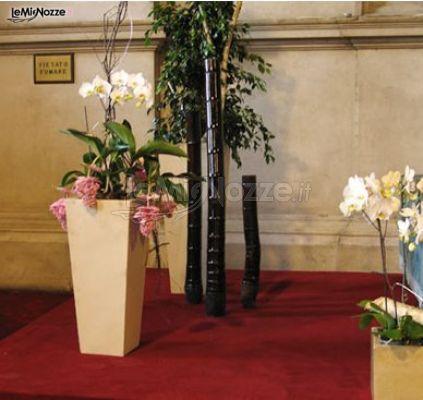 Foto 271 addobbi floreali location orchidee in vaso - Vaso in gres per orchidee ...