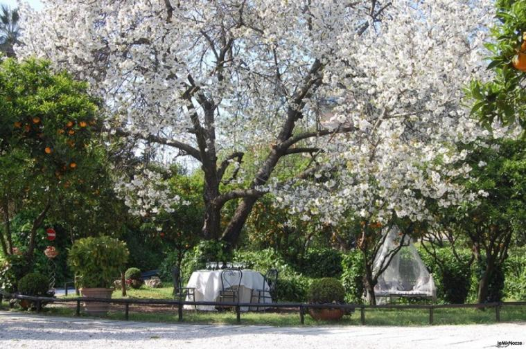 La Terra degli Aranci - Giardino della location di nozze