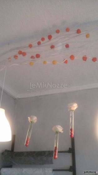 Provette appese al soffitto