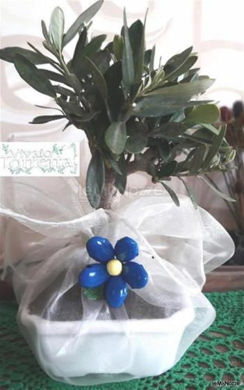 Bomboniera Ulivo in organza con confetti blu Lucca